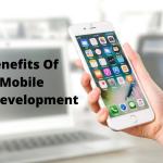 5 Benefits of Custom Mobile Application Development for Online Business