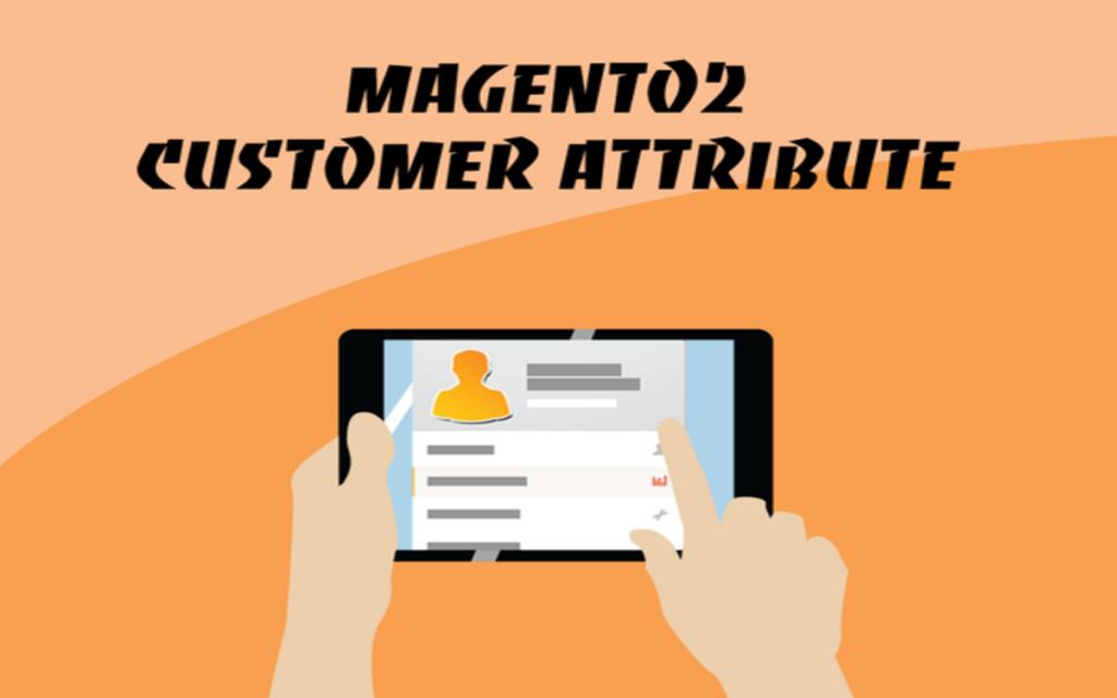 Magento 2 Customer Attribute