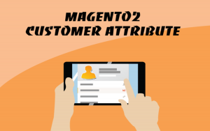 Magento 2 Customer Attribute