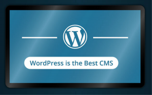 wordpress is the best cms