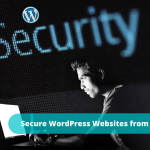 How to Secure WordPress Websites from Hackers?