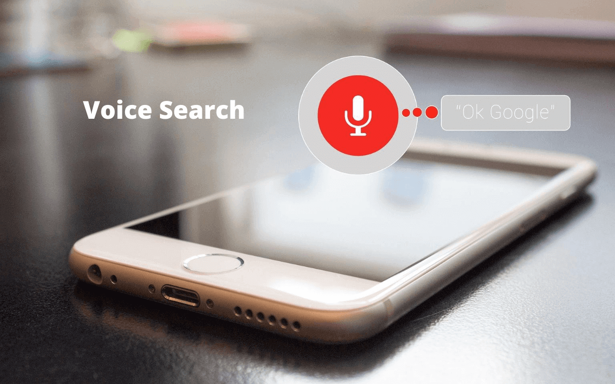 seo trends voice search